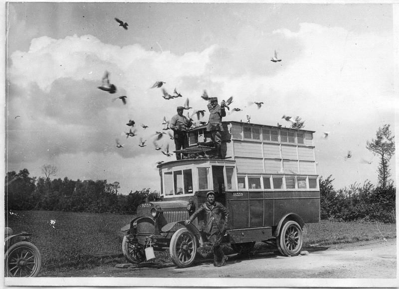 CBA-pigeonnier